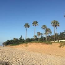 Fajara Beach